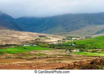 farmland, irlandia