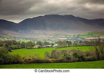 farmland, krajobraz, irlandia