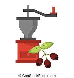 fasola, kawa rozcieracz, liście