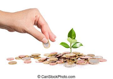 finanse, handlowy, -, uruchomienie, nowy