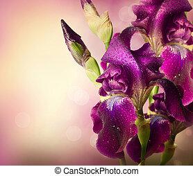 fioletowe kwiecie, sztuka, irys, kwiat, design., piękny