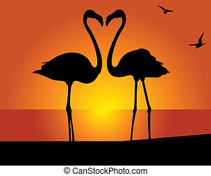 flamingo., pocałunek