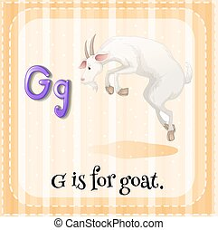 flashcard, litera g, goat
