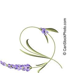 flower., jednorazowy, załamać