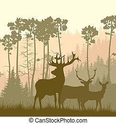 forest., łoś, ostrze, dziki