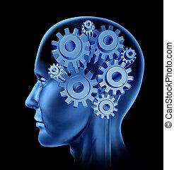 funkcja, inteligencja, ludzki mózg
