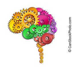 funkcja, mózg, ludzki