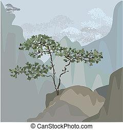 góra, drzewo, występ