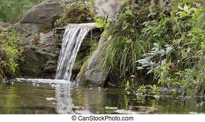 góra, forest., potok, malowniczy