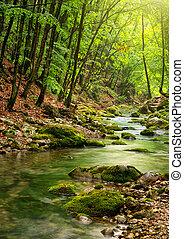 góra, rzeka, las, głęboki