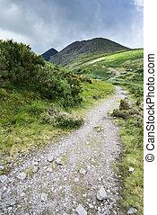 górska droga, irlandia