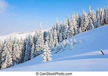 górski krajobraz, zima