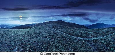 górski szczyt, ścieżka, trawa, noc