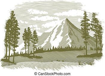 górskie jezioro, drzeworyt, scena