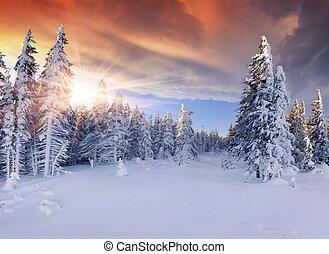 góry., dramatyczny, piękny, wschód słońca, niebo, czerwony, zima