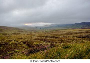 góry, irlandia, wicklow