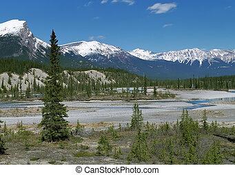 góry, rockies, prospekt, kanadyjczyk, panoramiczny