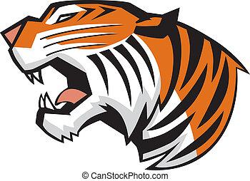 głowa, tiger, wektor, ryk, widok budynku
