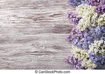 gałąź, bez, kwiaty, drewno, kwiat, rocznik wina, tło