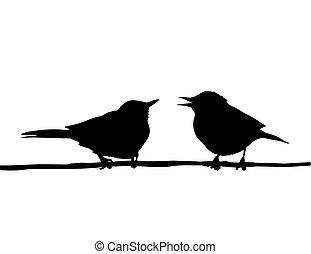 gałąź, rysunek, posiedzenie, ptaszki, wektor, dwa