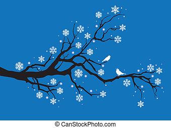 gałąź, wektor, drzewo zima