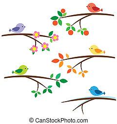 gałęzie, ptaszki
