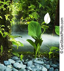 garden., orientalny