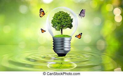 globalny, na, bulwa, konserwacja, lampa, pojęcia, liście, drzewa, light., suchy, roślina, rozwój, las, umieszczony, wnętrze, środowiskowy, ocieplać