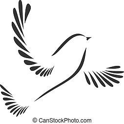gołębica, ptak, albo