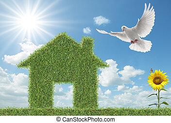 gołębica, trawa, zielony dom