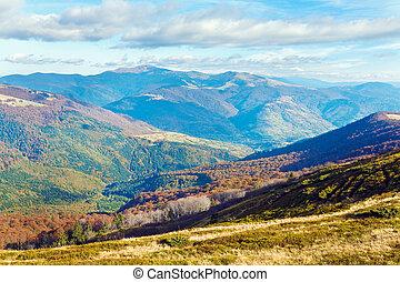 gołe drzewa, sztywny, jesień, góry