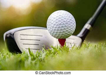 golfowy klub, trawa, piłka