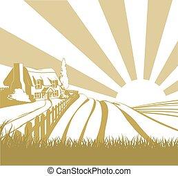 gospodarcze pole, krajobraz