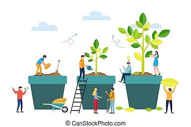 gradacja, plant., drzewo, nasienie, wielki, rosnąć