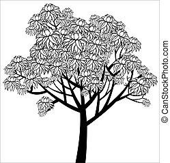 graficzny, drzewo, młody, wektor, flowering, rysunek