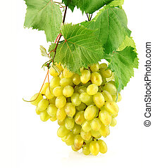 grape odchodzi, odizolowany, owoc, zielony, świeży