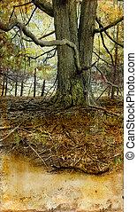 grunge, drzewo, stary, tło