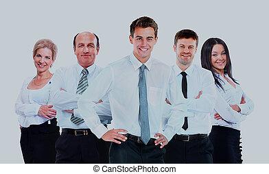 grupa, handlowy zaludniają, odizolowany, tło., team., biały