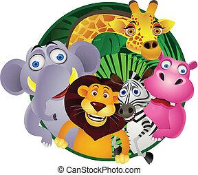 grupa, zwierzę