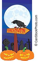 halloween, -, drogowskaz, kruk