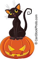 halloween, kot, dynia