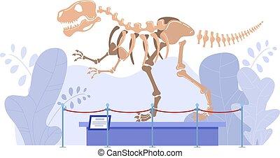 historia, kasownik, muzeum, szkielet dinozaura, ilustracja, paleontologia, wektor, wystawa