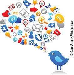 ikony, błękitny, towarzyski, ptak, media