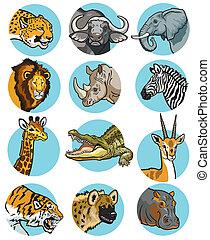 ikony, komplet, zwierzęta, dziki