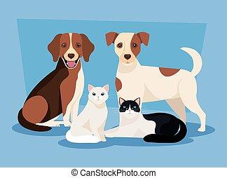ikony, koty, psy, grupa
