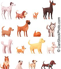 ikony, pies, zbiór, retro, rysunek, dziedziczy się