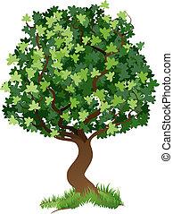 ilustracja, drzewo
