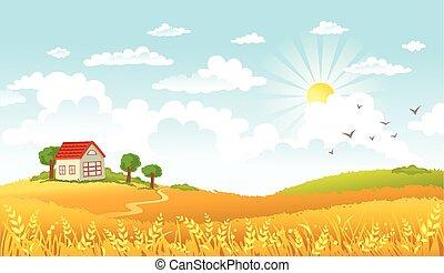 ilustracja, krajobraz., wektor, piękny