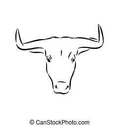 ilustracja, rys, bull., ręka, prospekt., pociągnięty, wektor, illustration., byk, bok