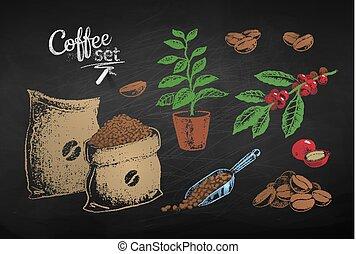 ilustracje, fasole kawy, liście